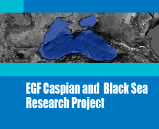 The Changing Dynamics of the Wider-Black Sea in Regional Security and External Relations